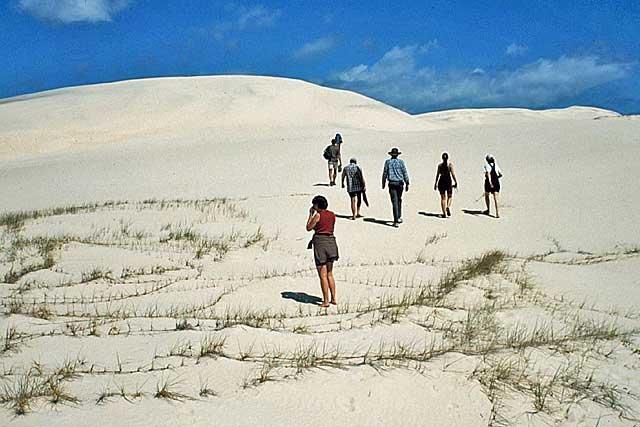 walking-sand-dune-2